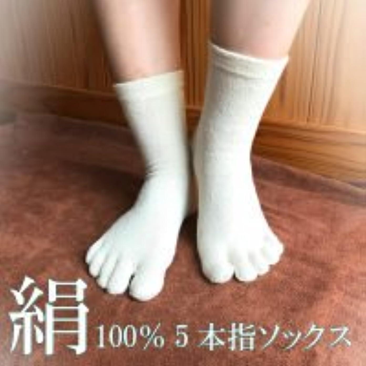 お祝い軽蔑する生理絹100%5本指ソックス (フリー, 白)