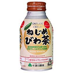 十津川農場  ねじめびわ茶  290mlボトル缶×24本入×(2ケース)