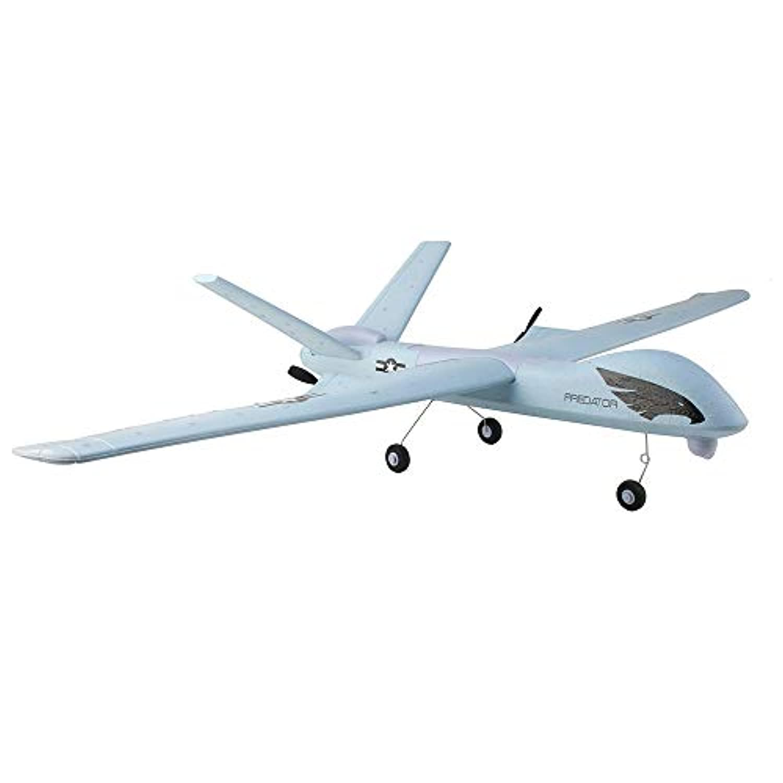 Coerni RCグライダー LED RC ウイングスパン 2CHモード EPO フライウィング エアクラフト EPP フォーム 飛行機