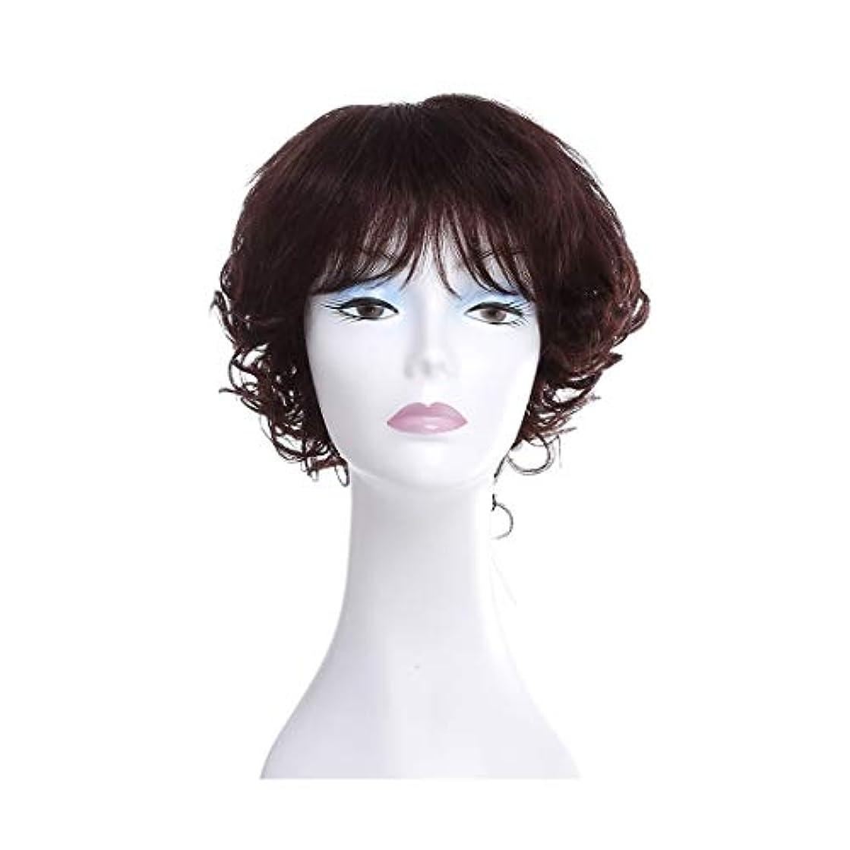 カーペット悪用まともなYOUQIU 女性ウィッグ100%実髪ストレッチネット気質ふわふわカーリーヘアウィッグウィッグ (色 : Photo Color)