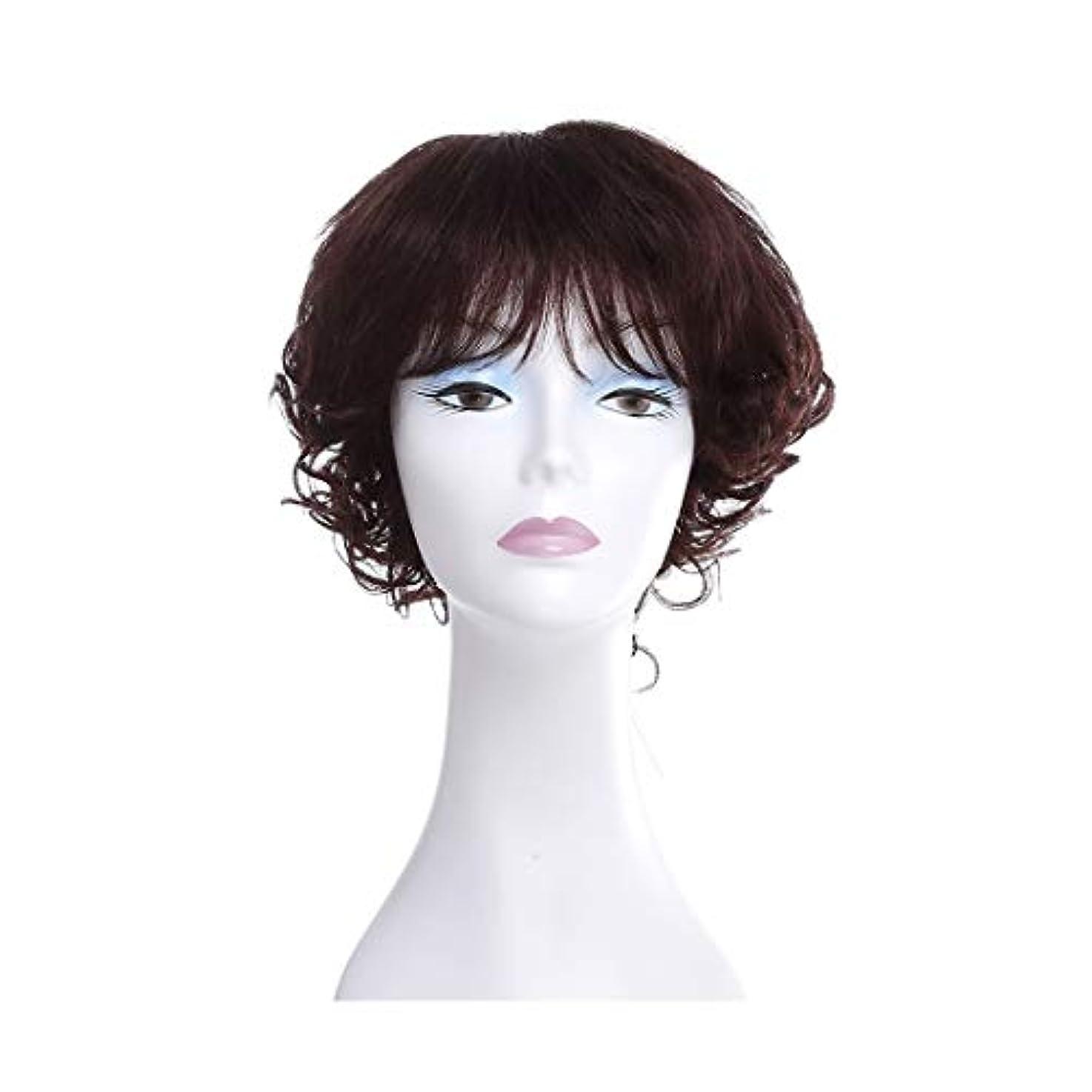 教室スクレーパー自由YOUQIU 女性ウィッグ100%実髪ストレッチネット気質ふわふわカーリーヘアウィッグウィッグ (色 : Photo Color)