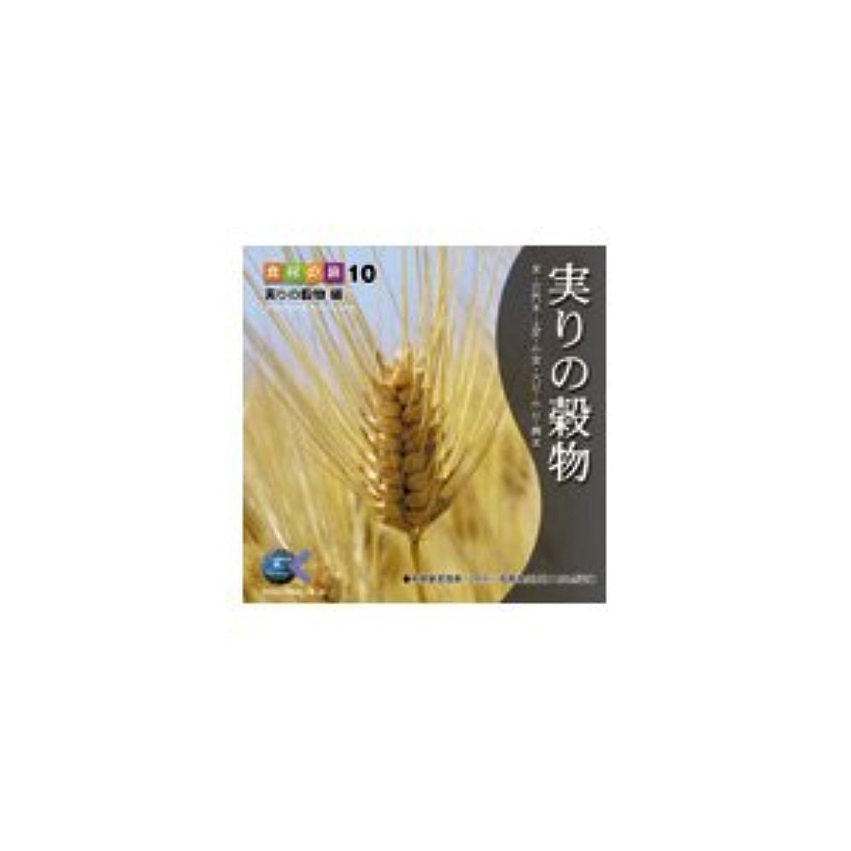 副詞孤独なレコーダー写真素材 マルク 食材の旅10「実りの穀物」編 ds-67410
