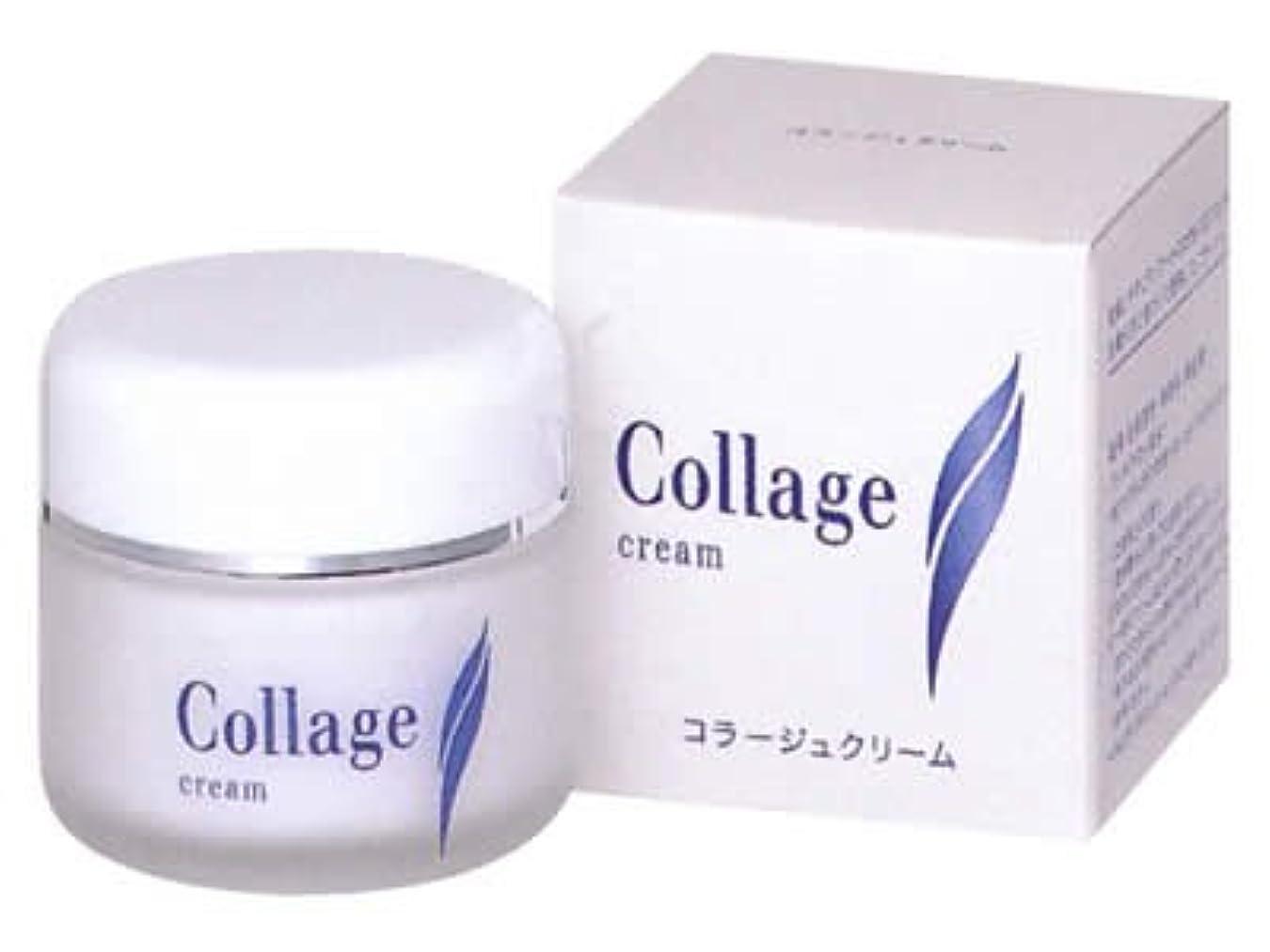 繊維請願者百万コラージュ クリームS 35g (医薬部外品)