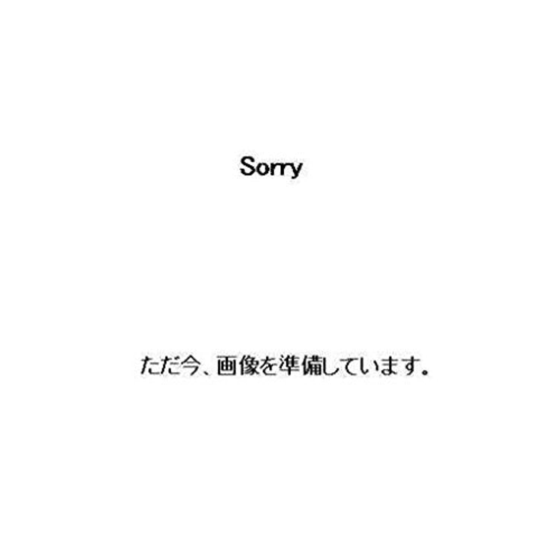 DM58654 ラチェットレンチ/ミガキショート