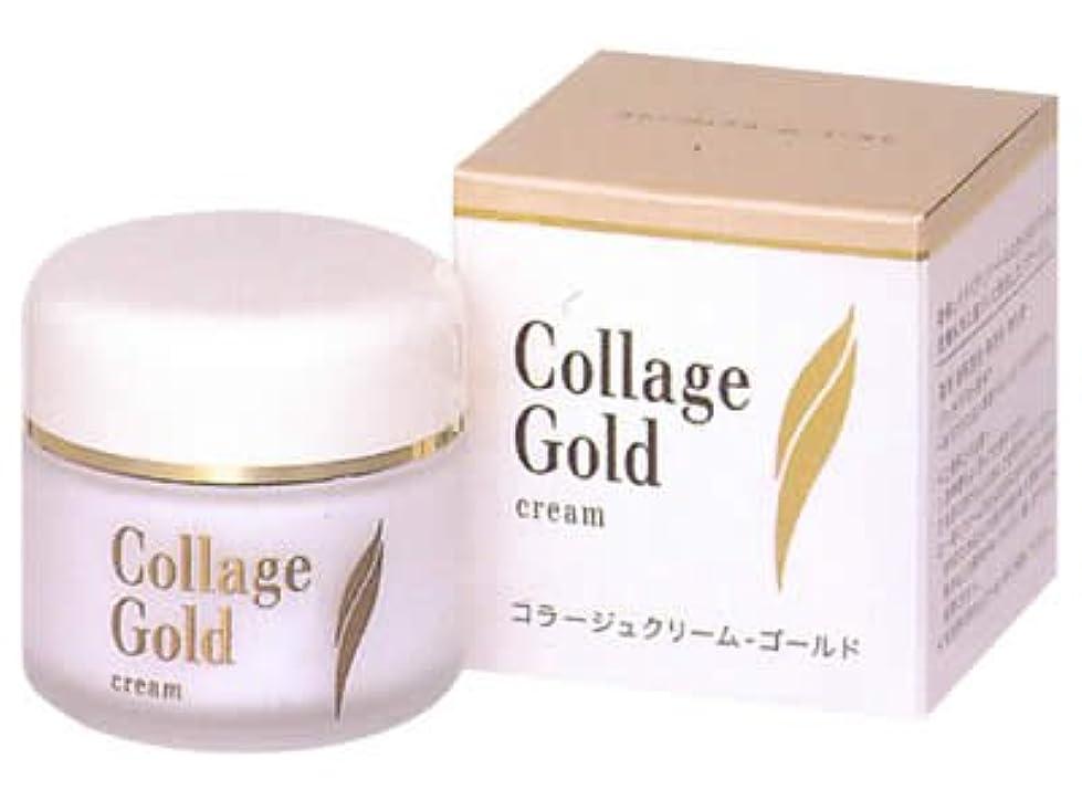 付き添い人半島神経衰弱コラージュ クリーム-ゴールドS 35g (医薬部外品)