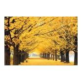 四季の詩 1000ピース 黄金色の道 (50cm×75cm、対応パネルNo.10)