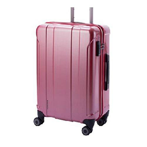 HIDEO WAKAMATSU スーツケース ツイン 49cm 85-75320