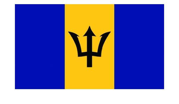 SeaSense Barbados Boat Flag