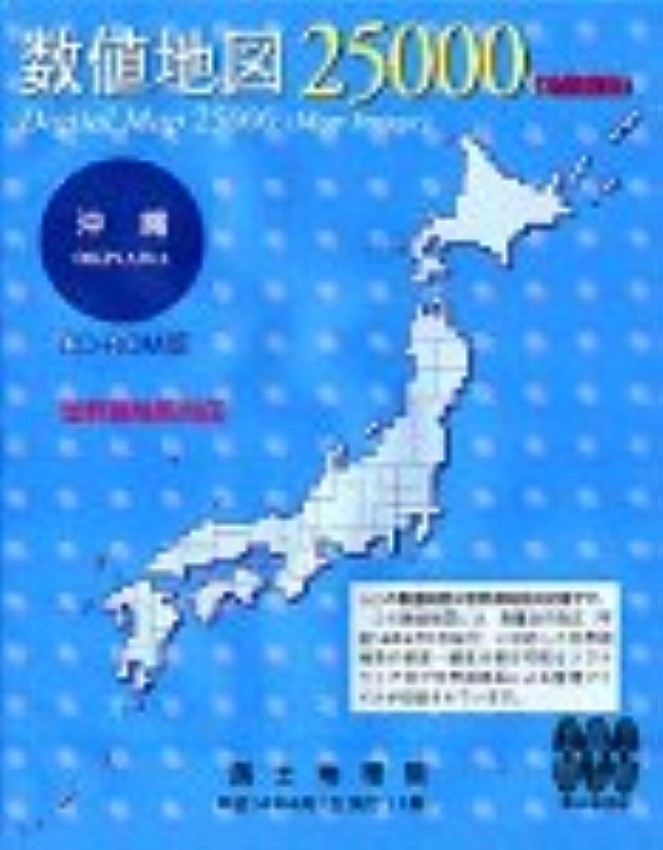 からかうリハーサルダッシュ数値地図 25000 (地図画像) 沖縄