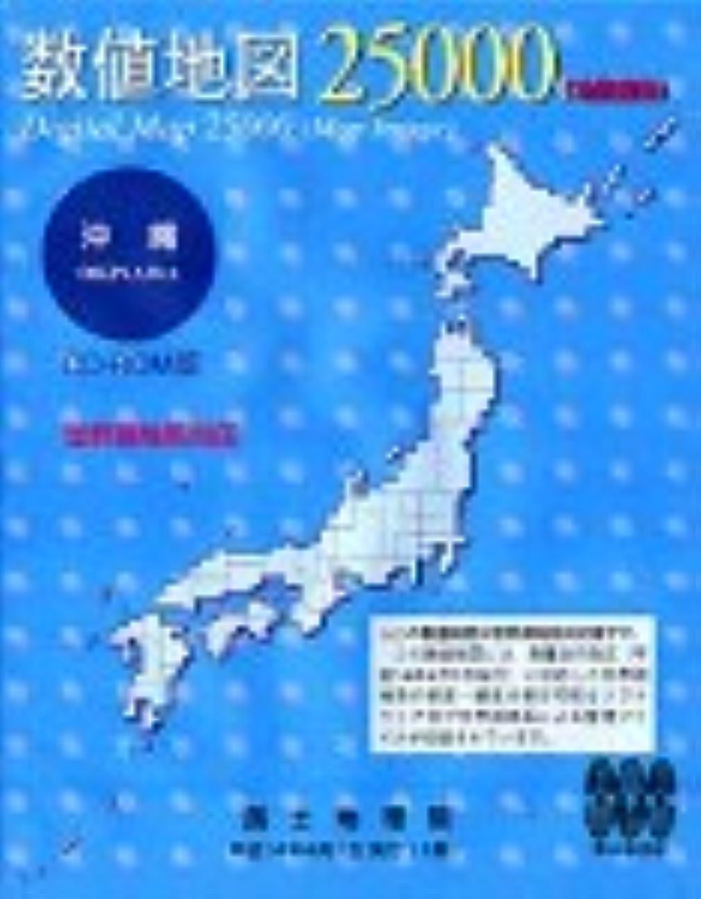 辞任するコーナー原子数値地図 25000 (地図画像) 沖縄