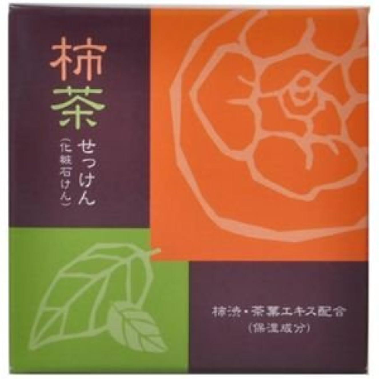 密度報いる横たわる柿茶石けん 80g 【3セット】