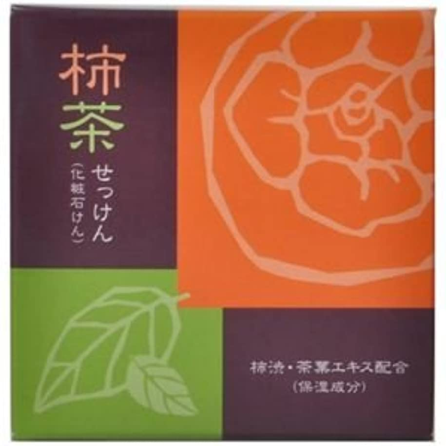 うん悪化させるホームレス柿茶石けん 80g 【3セット】