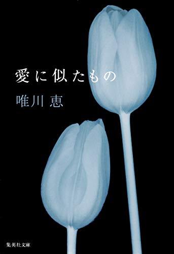 愛に似たもの (集英社文庫)