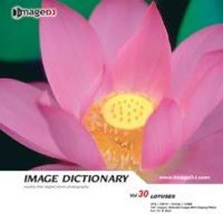 イメージ ディクショナリー Vol.30 蓮
