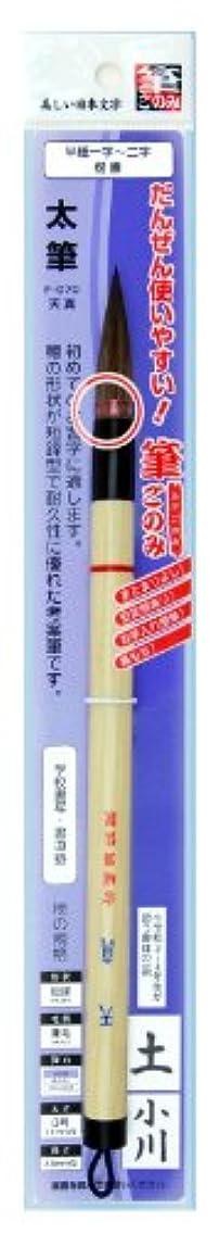 パイルサーマル習慣広島筆 書道 筆 天真(筆ごのみ装着) F-071 3号