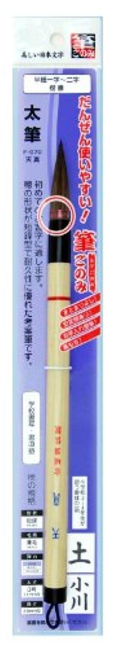 広大な病のぞき見広島筆 書道 筆 天真(筆ごのみ装着) F-071 3号
