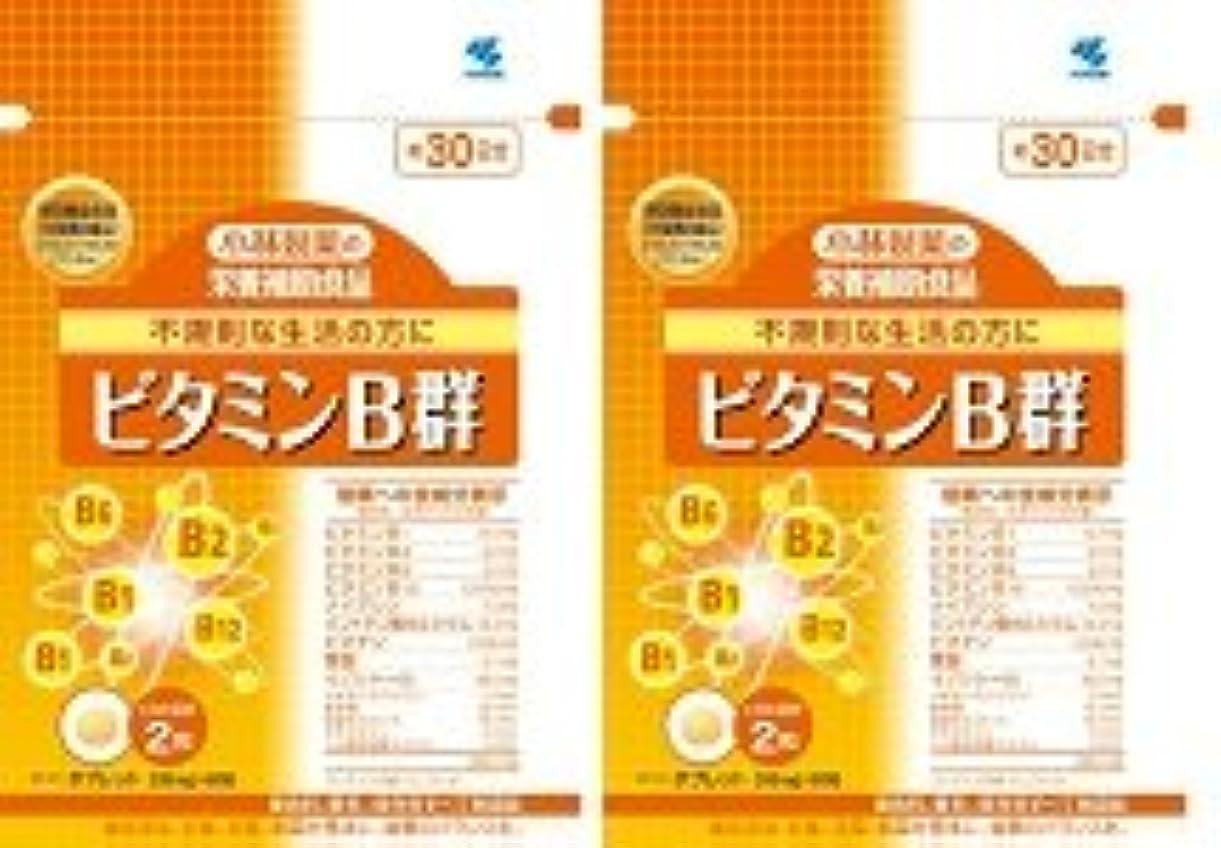 潜む強度ブロッサム【???便】小林製薬 ビタミンB群 60粒×2個セット