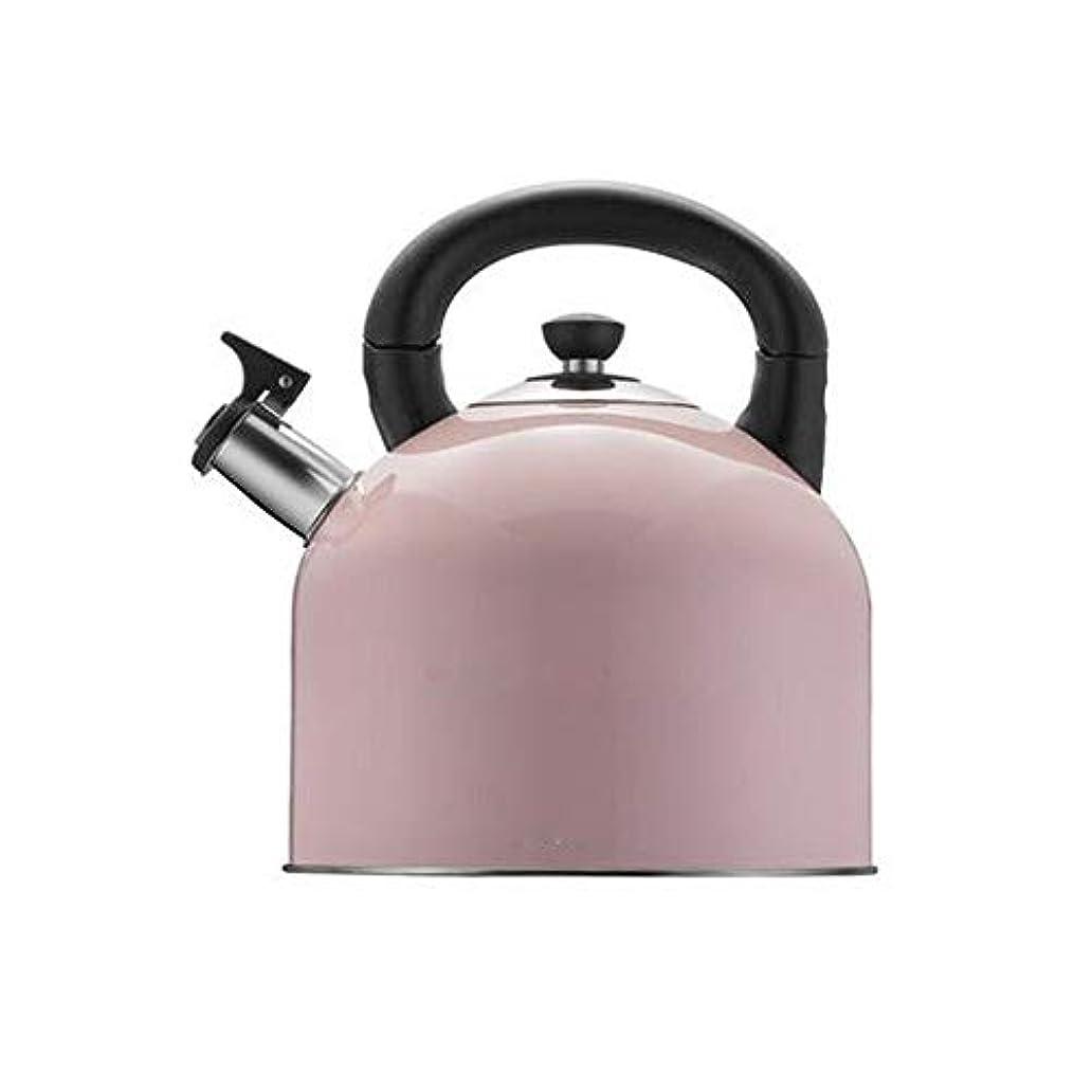 噴火尊敬下手Fengshangshanghang ゴージャスなティーポットを選ぶ - 私の最速沸騰304ステンレス鋼のティーポット多色オプション - グレー4L 多目的 (Capacity : 4L, Color : Pink)