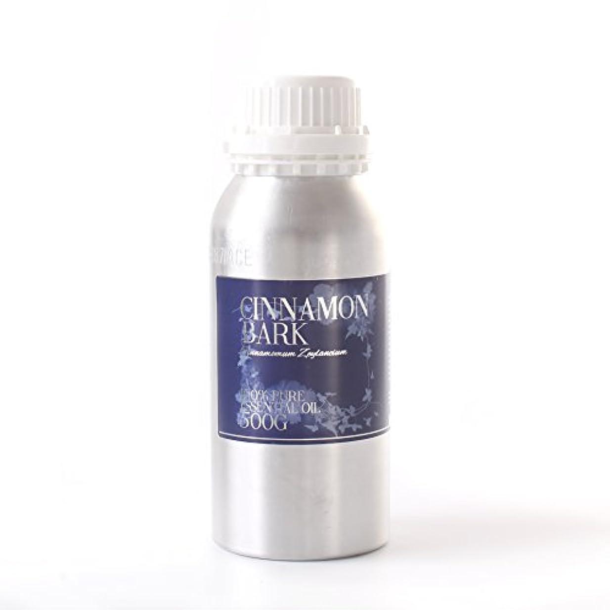 純度サミットコンクリートMystic Moments   Cinnamon Bark Essential Oil - 500g - 100% Pure
