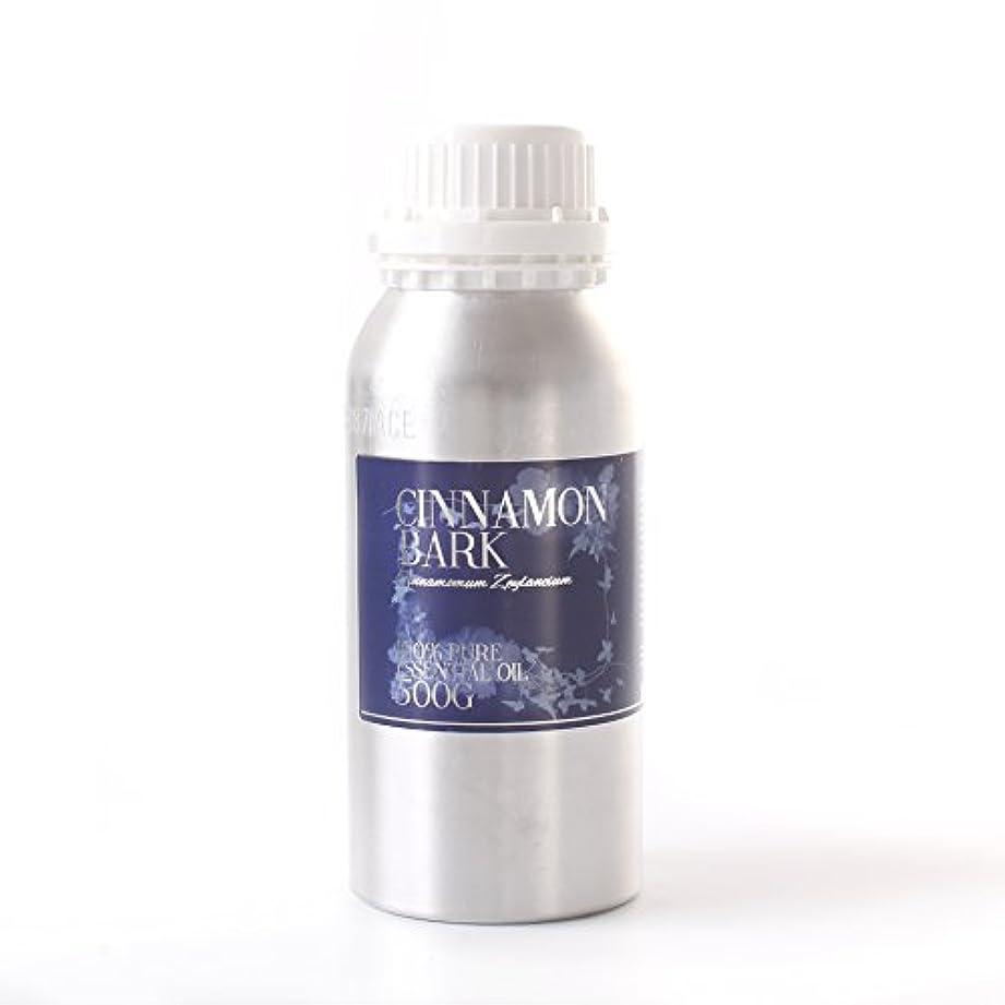 継承切断するノベルティMystic Moments | Cinnamon Bark Essential Oil - 500g - 100% Pure