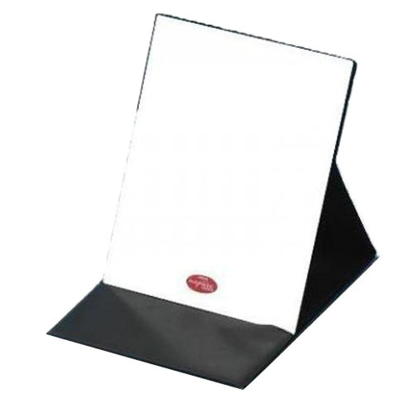 信者受粉者目を覚ますHP-43 ナピュア プロモデル拡大鏡付き折立ミラー(L)