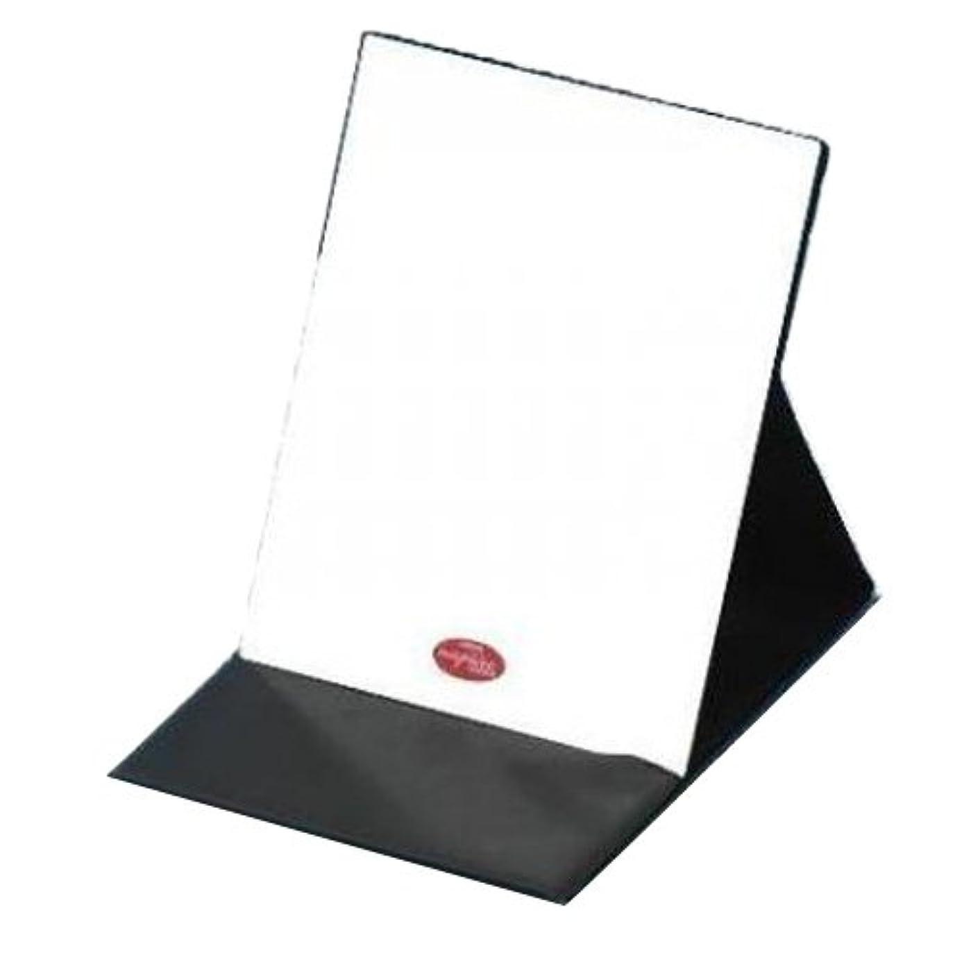 ライン震えミットHP-43 ナピュア プロモデル拡大鏡付き折立ミラー(L)
