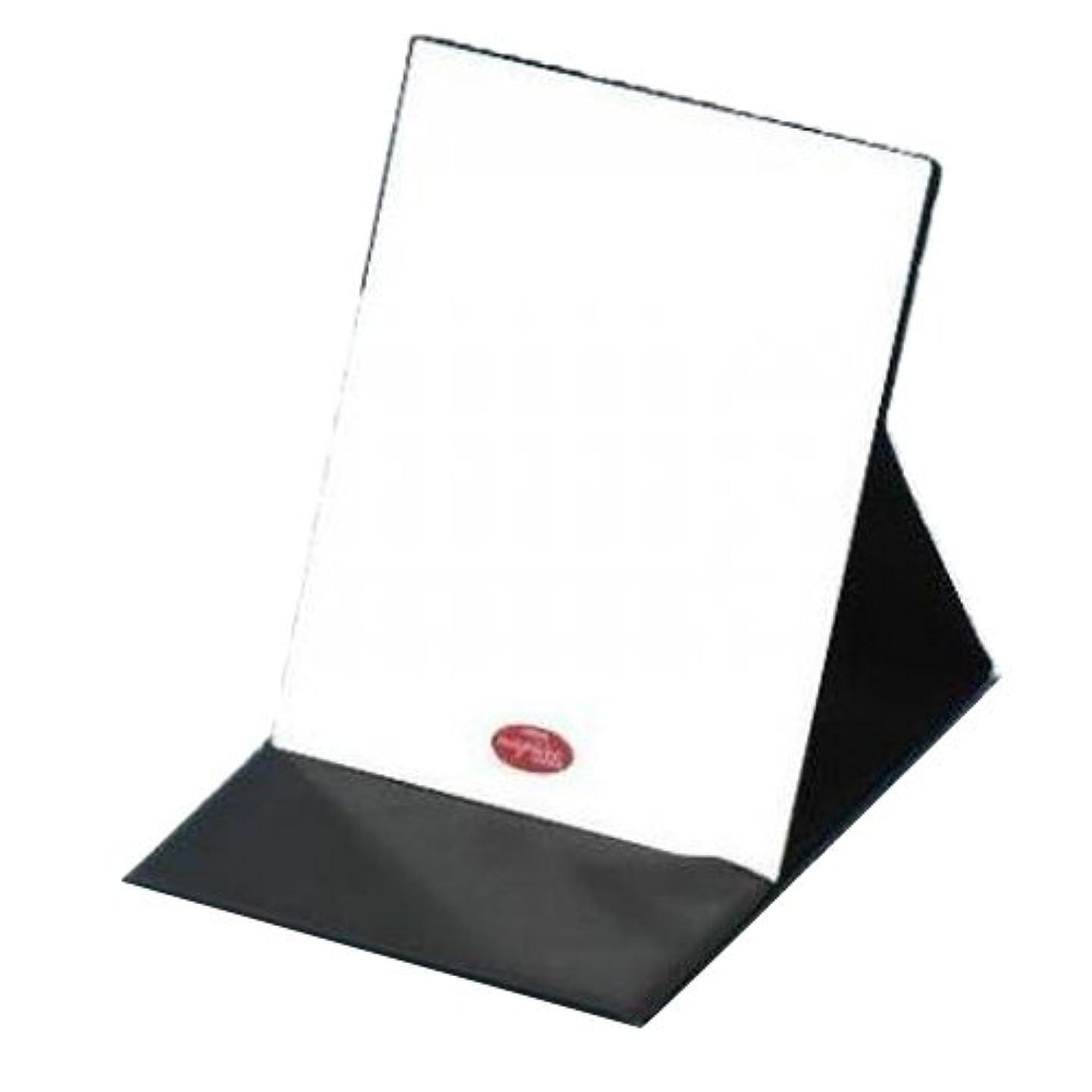 控える心からまろやかなHP-43 ナピュア プロモデル拡大鏡付き折立ミラー(L)