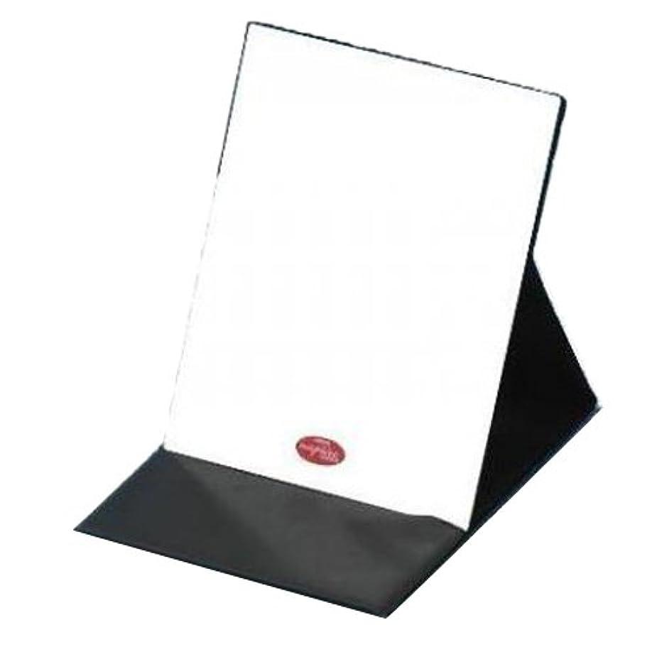 ホバー練習ぐるぐるHP-43 ナピュア プロモデル拡大鏡付き折立ミラー(L)