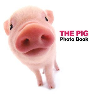 THE PIG Photo Bookの詳細を見る