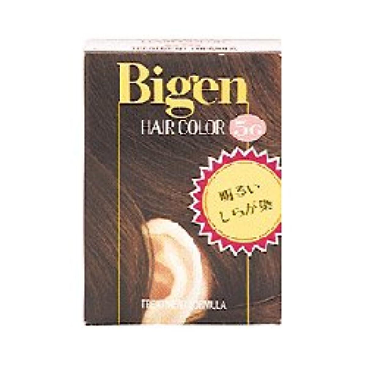 左熱緩めるビゲンヘアカラー 5G 深い栗色 (40g+40g)