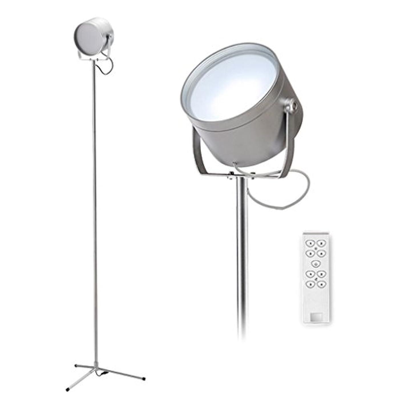 決定密白菜フロアスタンドフロアスタンド?ランプ LED標準ライト調節可能な明るさフロアランプアイ保護省エネランプシルバーベッドルームの研究フロアランプ 屋内照明フロアスタンド?ランプ