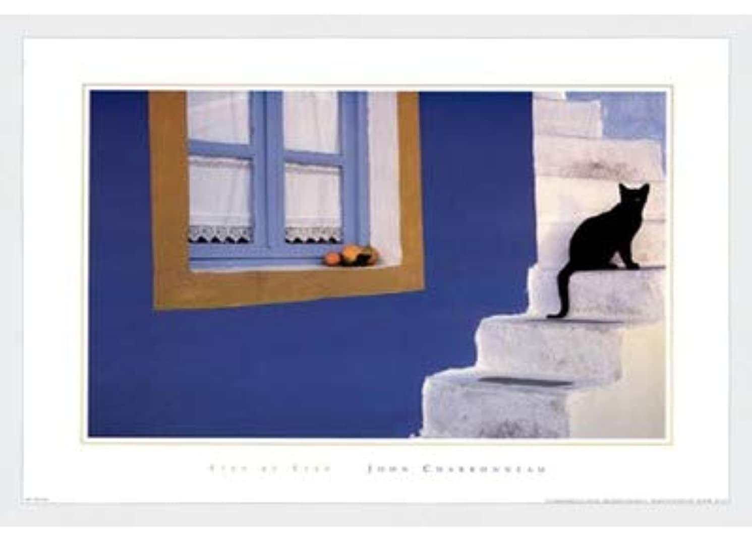 またね平らにするディスクStep by Step by John Charbonneau – 27 x 19.5インチ – アートプリントポスター LE_62216-F8989-27x19.5