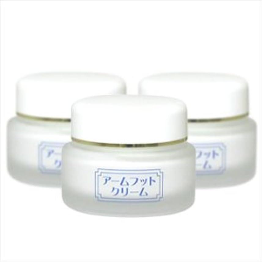 スチュワード発掘夜間薬用デオドラントクリーム アームフットクリーム(20g) (3個セット)