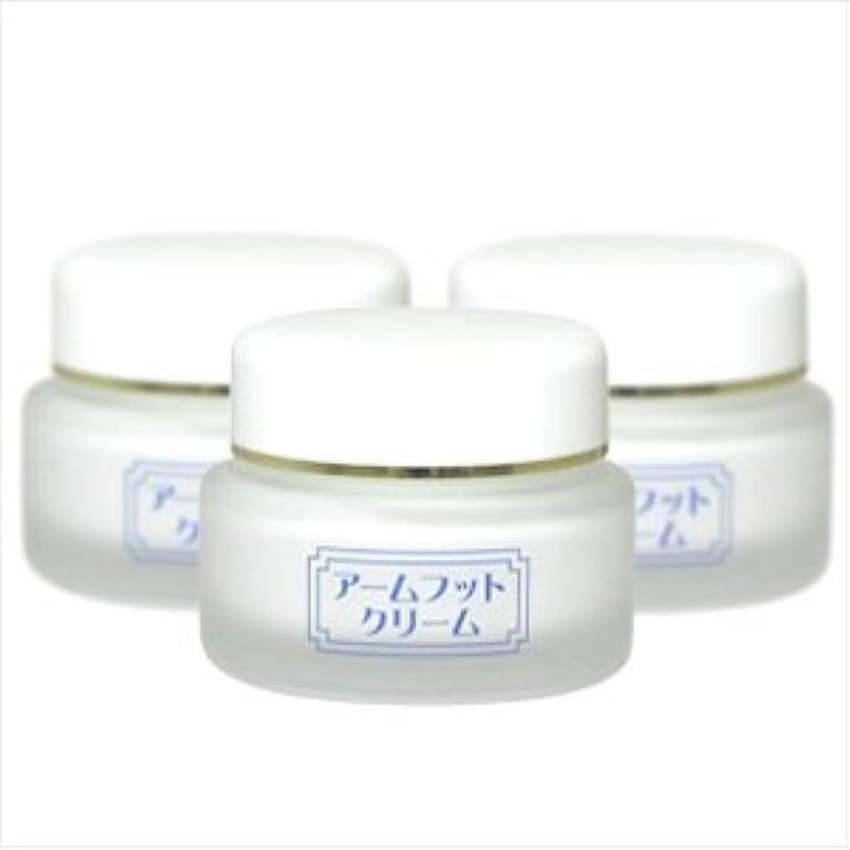 嵐のガジュマル統計薬用デオドラントクリーム アームフットクリーム(20g) (3個セット)