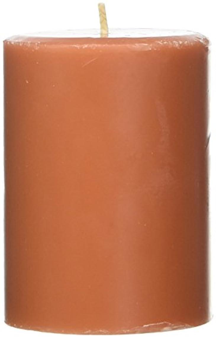 タンク急襲困惑したNorthern Lights Candles Roasted Pumpkin FragranceパレットPillar Candle、3 x 4
