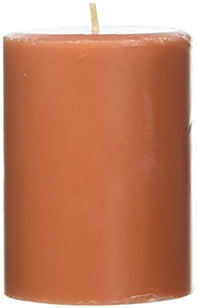 緯度手足気晴らしNorthern Lights Candles Roasted Pumpkin FragranceパレットPillar Candle、3 x 4