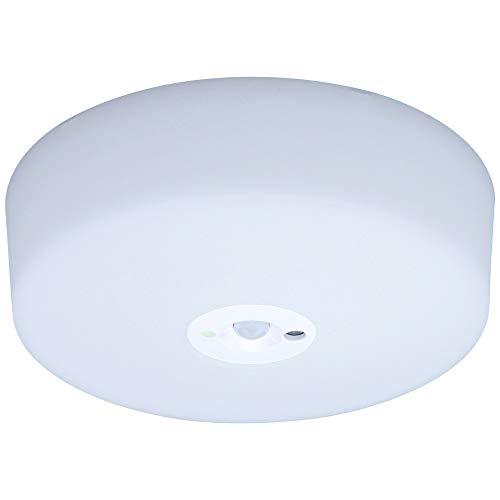 アイリスオーヤマ小型シーリングライト 人感センサー付 SCL5NMS-HL 昼白色 228526 アイリスオーヤマ