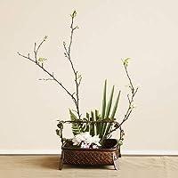 花かご 花バスケット 籐バスケット 籐鉢(17060115)
