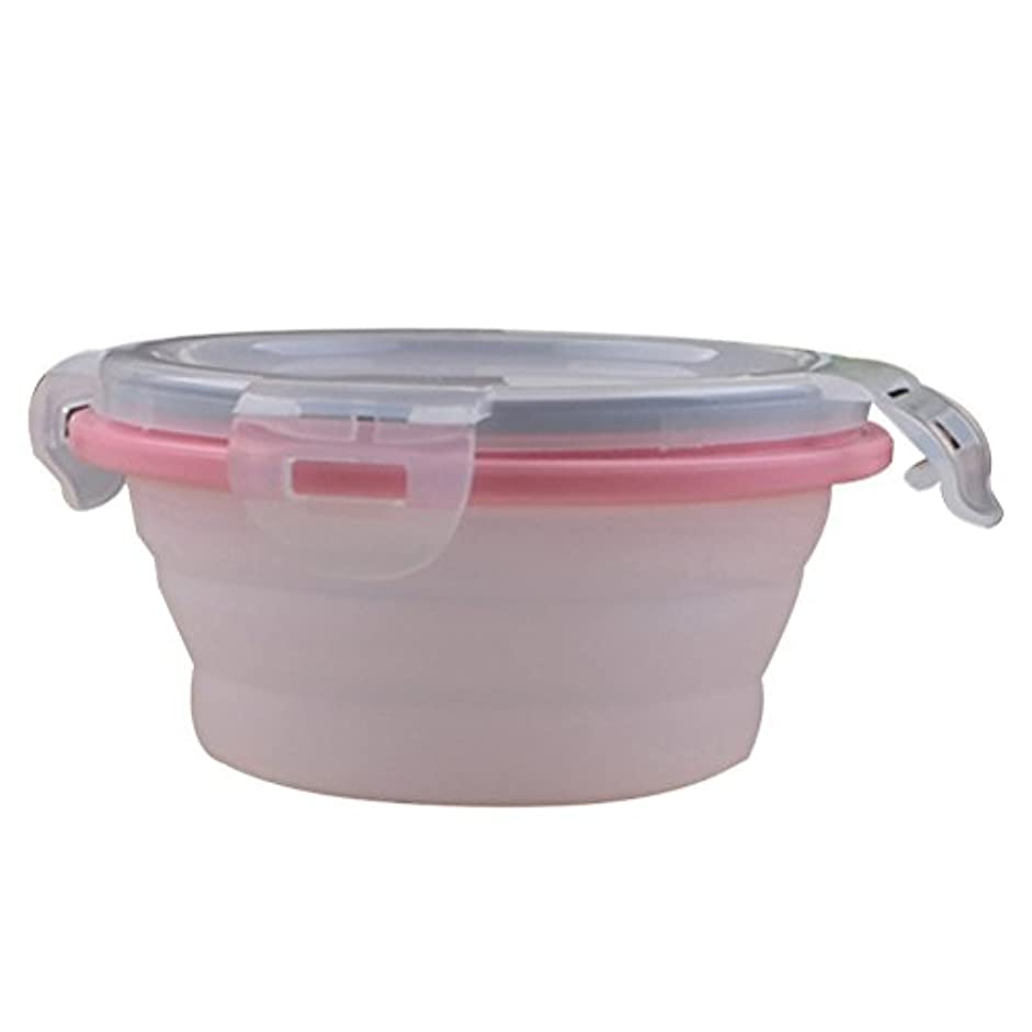 Zhhlinyuan 高品質 Travel Food Grade Silicone Pet Bowl Foldable for Feed and Water