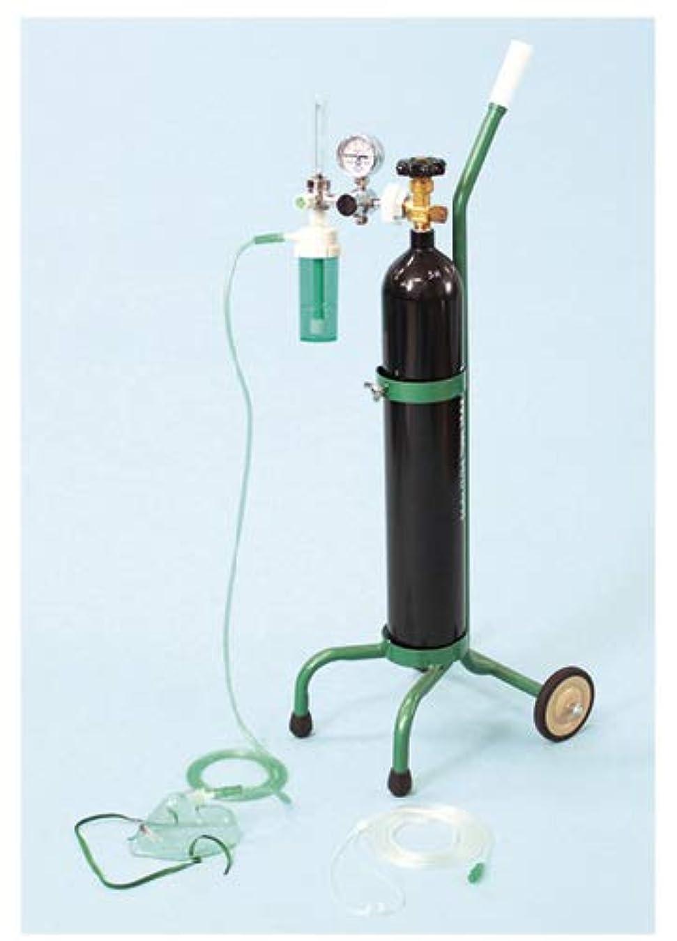 過ちモジュール政策ブルークロス?エマージェンシー 酸素吸入器 キャリータイプDX OX-500VDX(サンソナシ) 1組