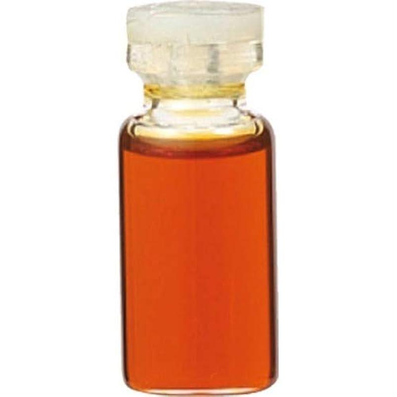時制分解する高価なエッセンシャルオイル ベチバー(3mL) 癒し用品 アロマオイル?精油 エッセンシャルオイル [並行輸入品] k1-4954753032787-ak