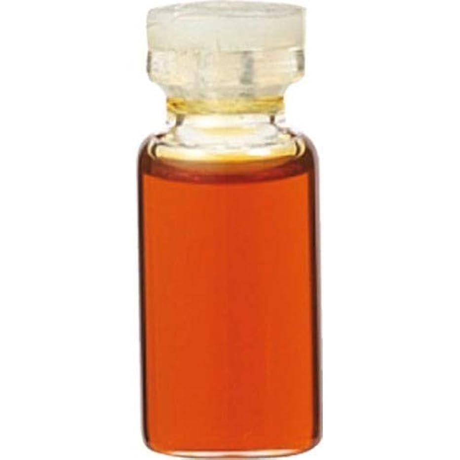 暗記する不名誉な未使用エッセンシャルオイル ベチバー(3mL) 癒し用品 アロマオイル?精油 エッセンシャルオイル [並行輸入品] k1-4954753032787-ak