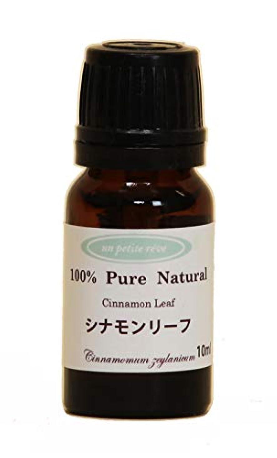 レルム不適切なまともなシナモンリーフ  10ml 100%天然アロマエッセンシャルオイル(精油)