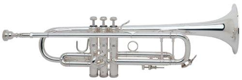 V.Bach 180ML37/25SP Bb トランペット