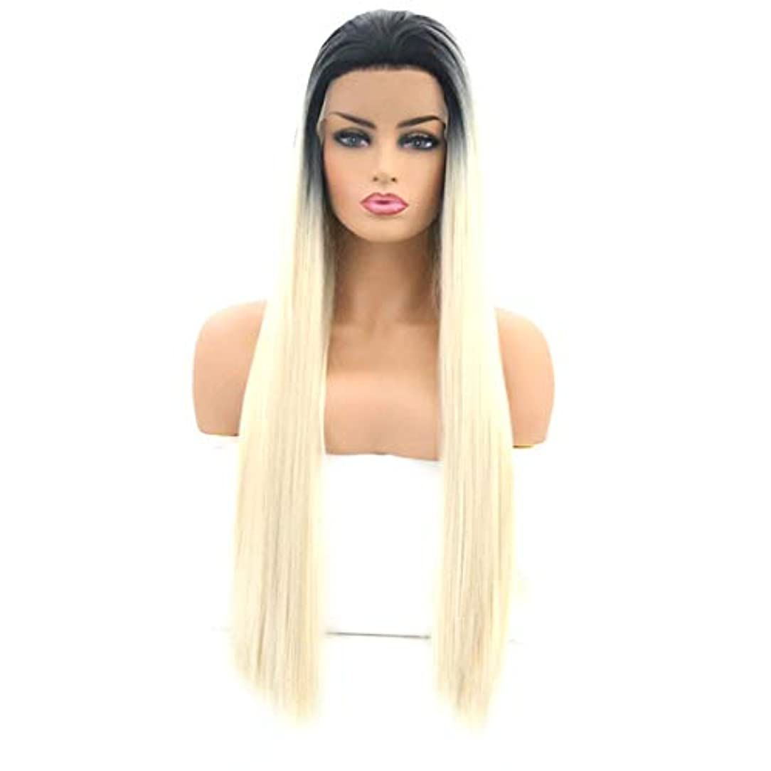 啓発する取るに足らないブリッジSummerys 女性のためのロングストレートヘアウィッグフロントレース高温シルクウィッグセット (Size : 26 inches)