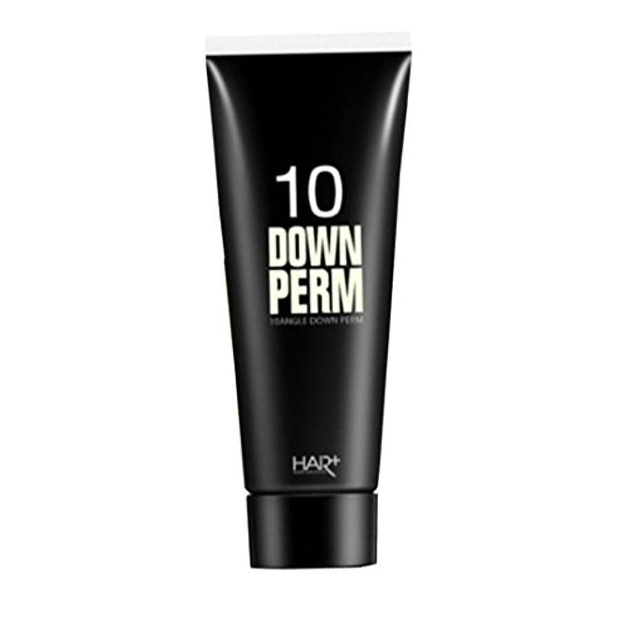 寛容現在普通のヘアプラス 10ダウンパーマ DOWN PERM 100ml
