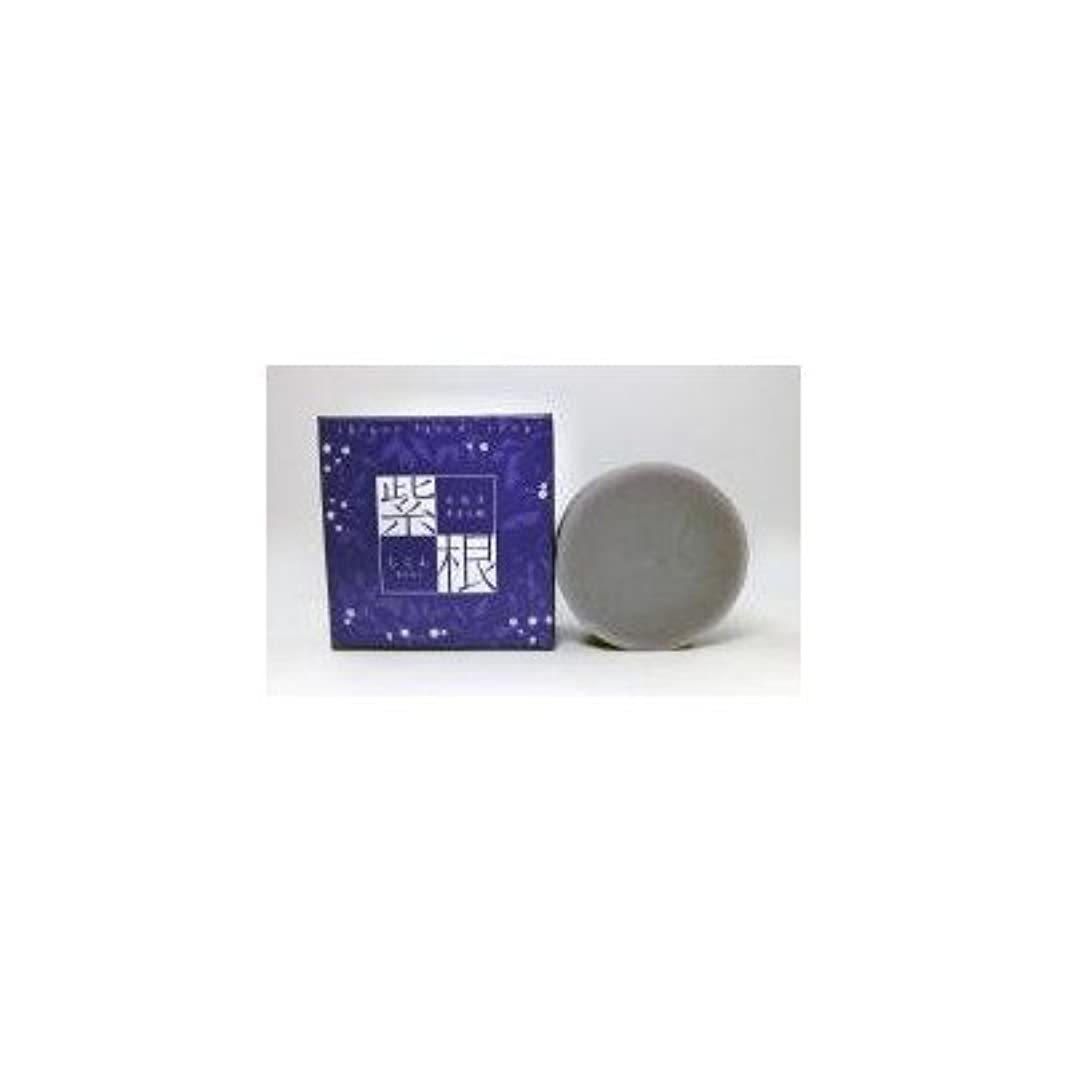排泄物面割り込み紫根エキスをたっぷり配合した洗顔石鹸 紫根石鹸 100g×5個セット