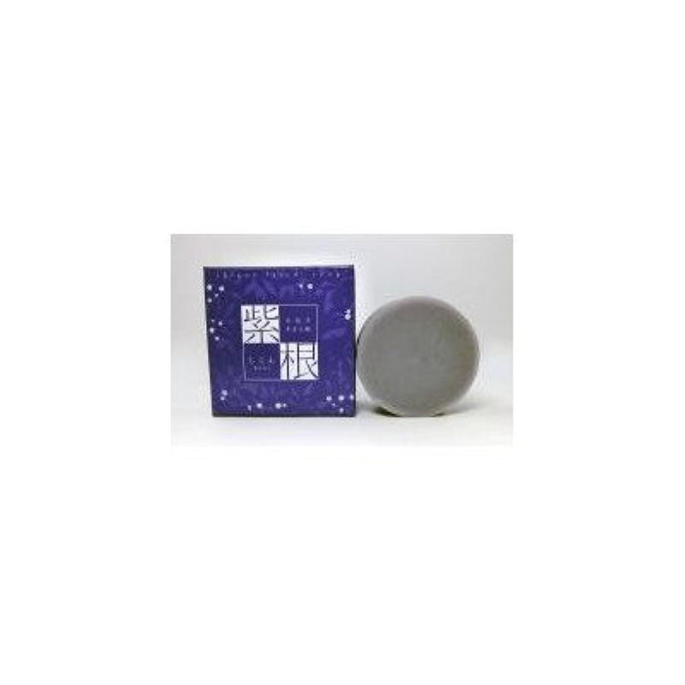 皮懐疑的ペイン紫根エキスをたっぷり配合した洗顔石鹸 紫根石鹸 100g×5個セット