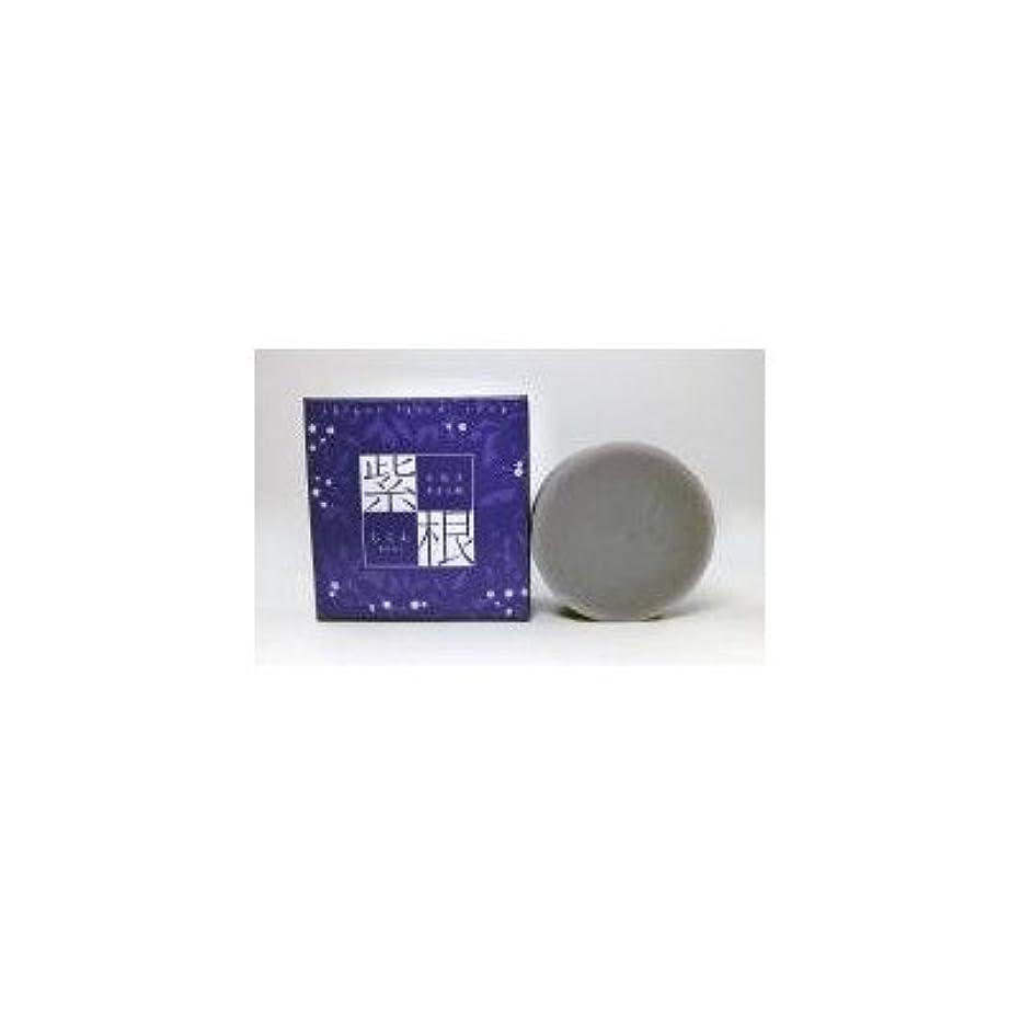 海洋教え交換紫根石鹸 100g×5個セット