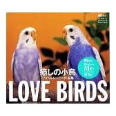 Love Birds 癒しの小鳥